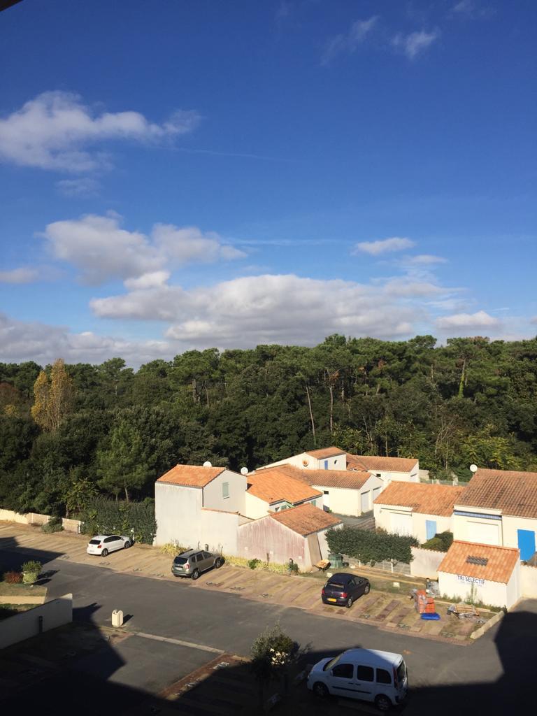 la vue de la chambre sur le parking et la forêt